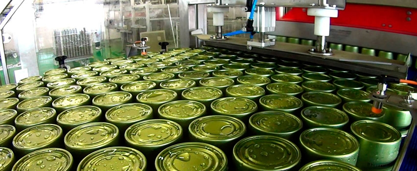 Инвесторы могут вложить 15 млн долларов в консервный завод в Подмосковье